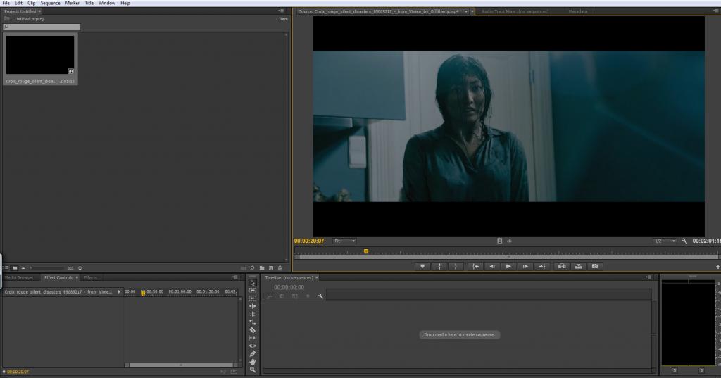 Premiere Pro - Cinematography Prep