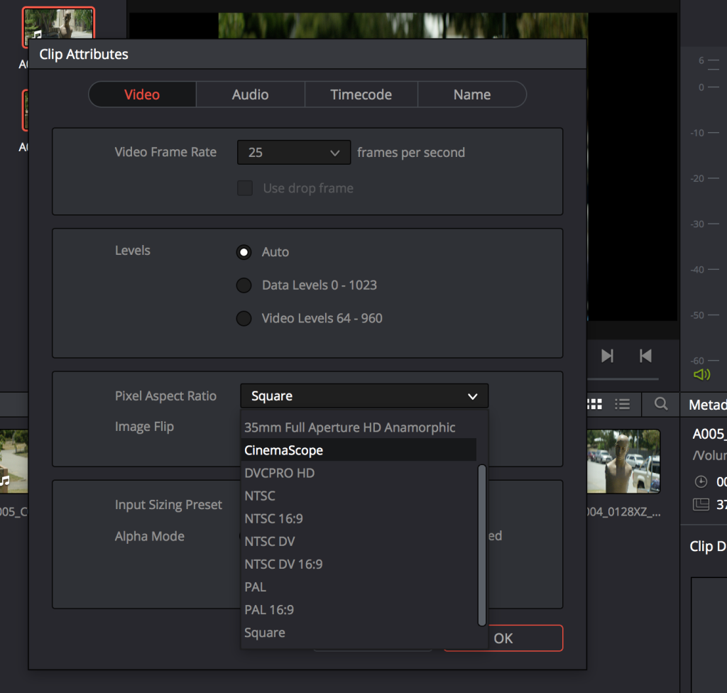 DaVinci Resolve Anamorphic - Clip Attributes